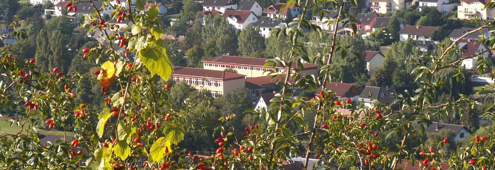Grundschule Guldental